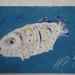 Рыба красавица Джотто