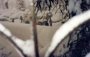 Yefim Gammer  foto 341